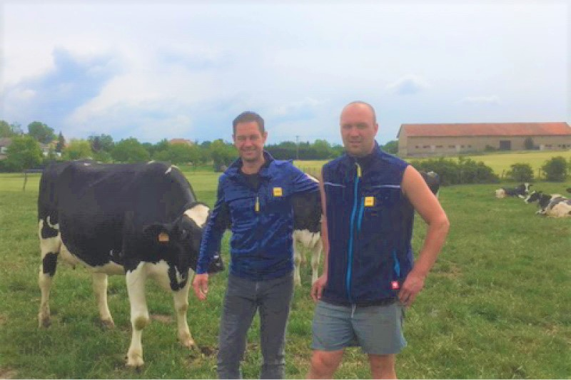 JOSERA DairyPilot - améliorer la qualité du lait pendant les phases de transition