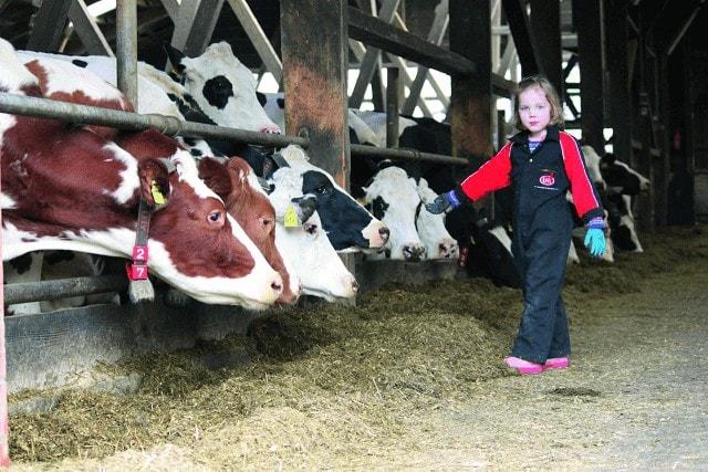 JOSERA NutriEffect - pour plus de stabilité dans votre troupeau